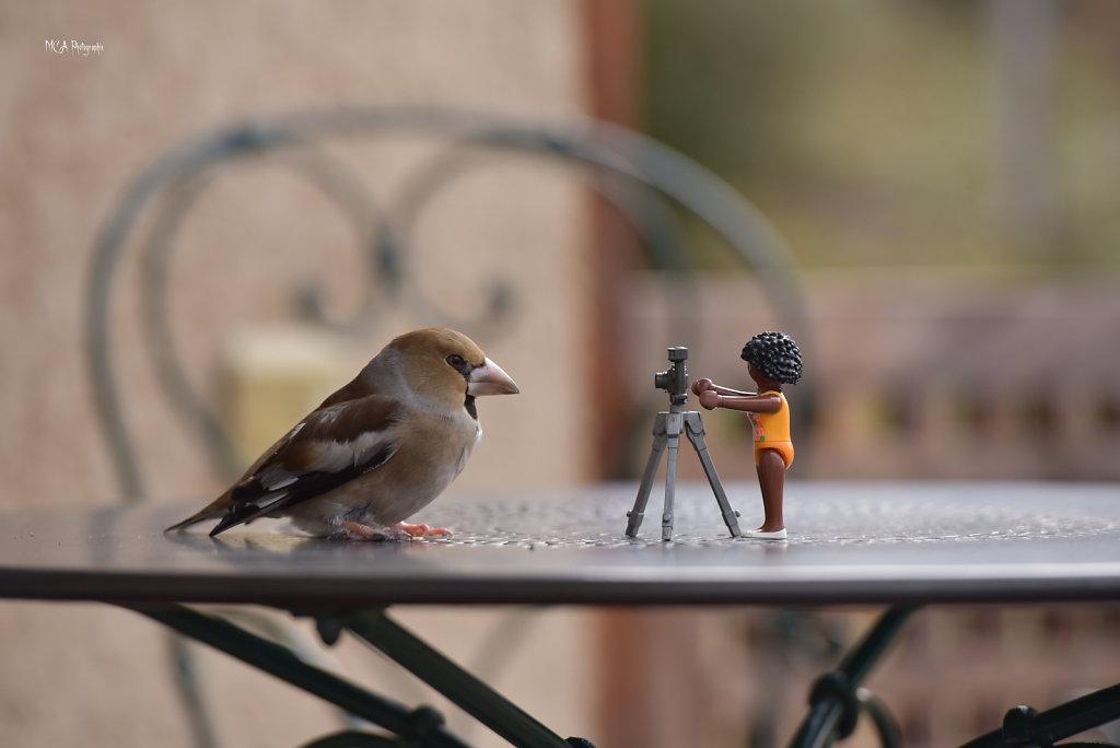 Un photographe en action